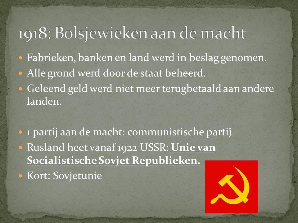 1918: Bolsjewieken aan de macht
