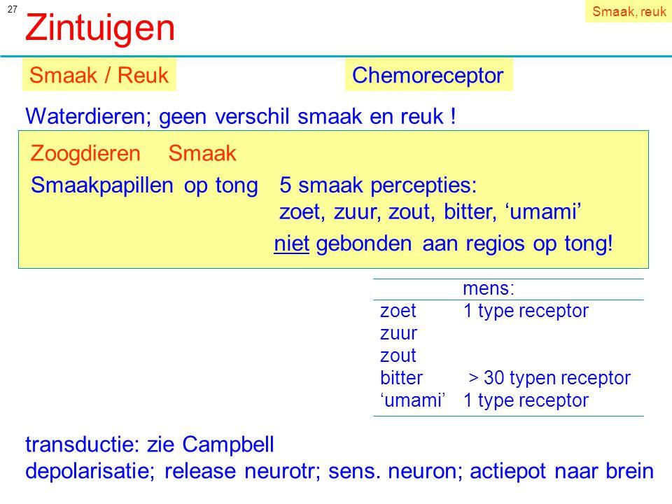 Zintuigen Smaak / Reuk Chemoreceptor