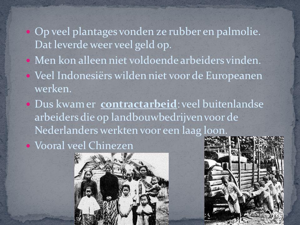 Op veel plantages vonden ze rubber en palmolie
