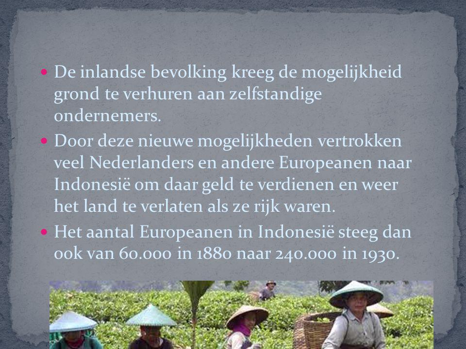 De inlandse bevolking kreeg de mogelijkheid grond te verhuren aan zelfstandige ondernemers.
