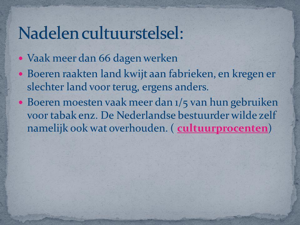 Nadelen cultuurstelsel:
