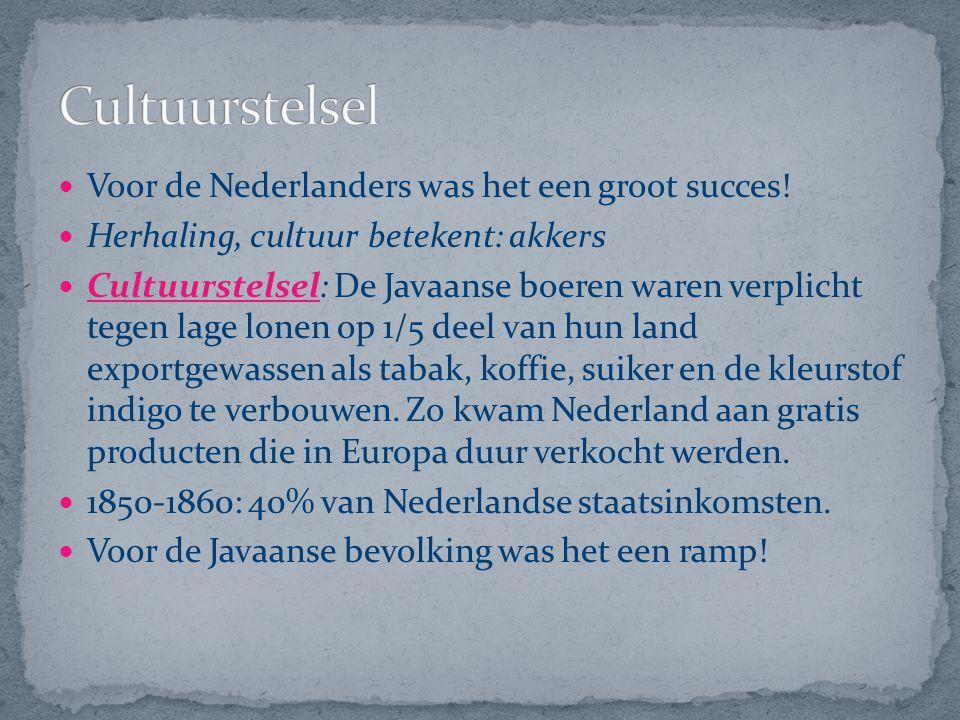 Cultuurstelsel Voor de Nederlanders was het een groot succes!