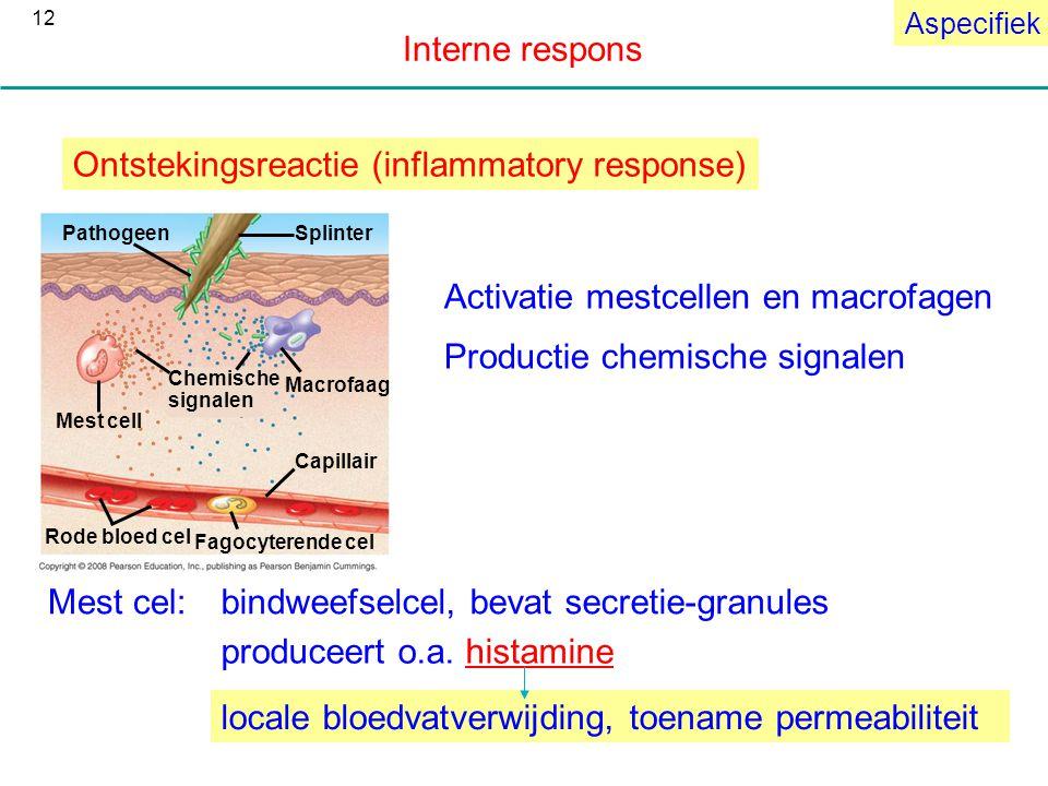Ontstekingsreactie (inflammatory response)