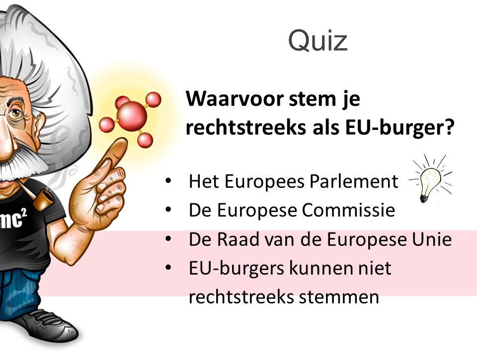 Quiz Waarvoor stem je rechtstreeks als EU-burger