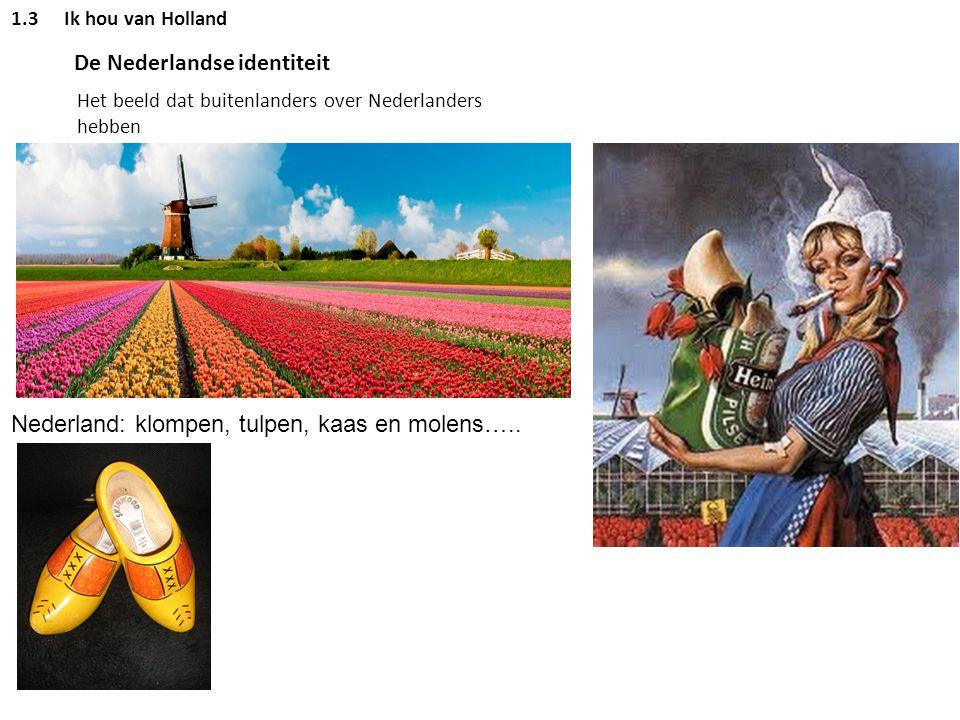 De Nederlandse identiteit