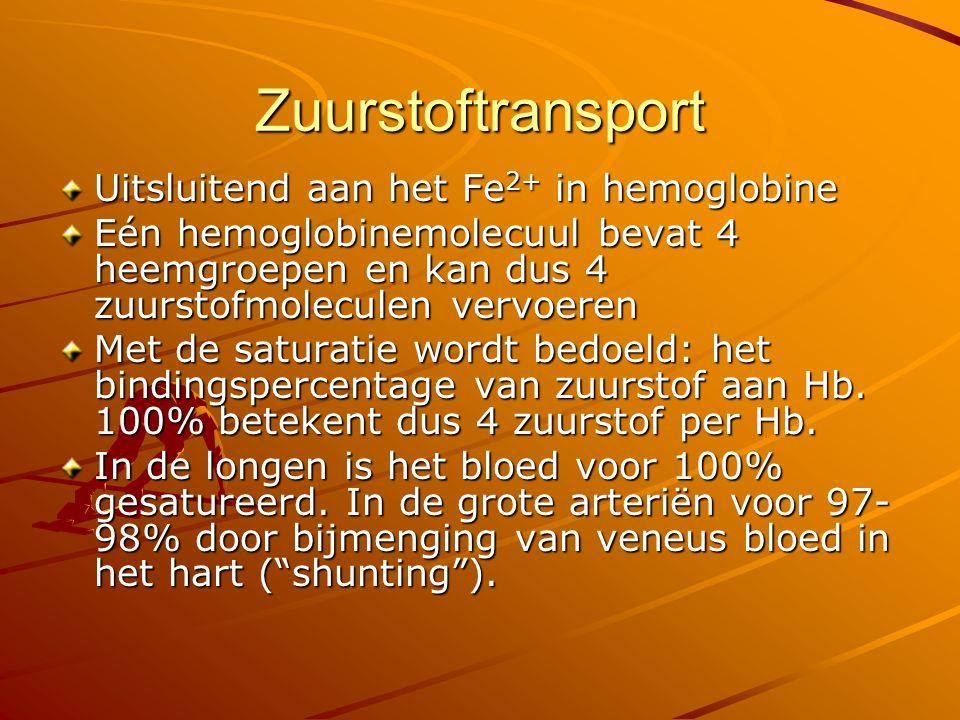 Zuurstoftransport Uitsluitend aan het Fe2+ in hemoglobine