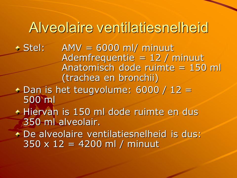 Alveolaire ventilatiesnelheid