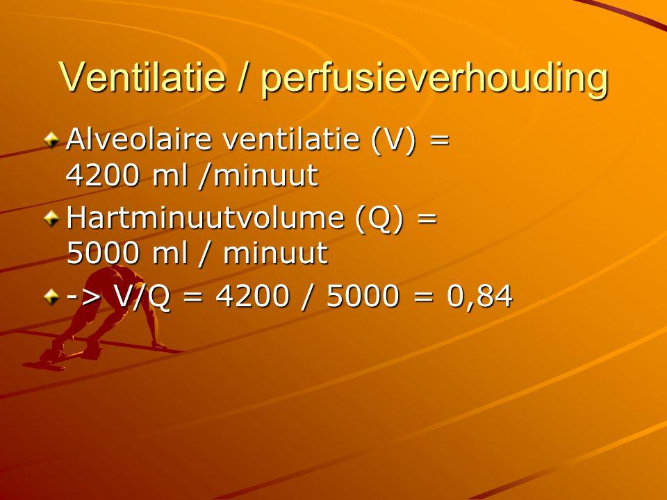 Ventilatie / perfusieverhouding