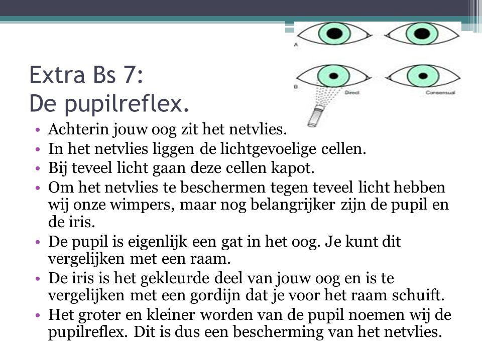 Extra Bs 7: De pupilreflex.