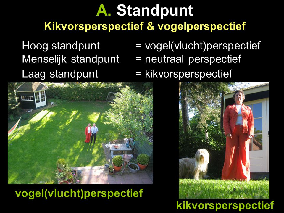 A. Standpunt Kikvorsperspectief & vogelperspectief