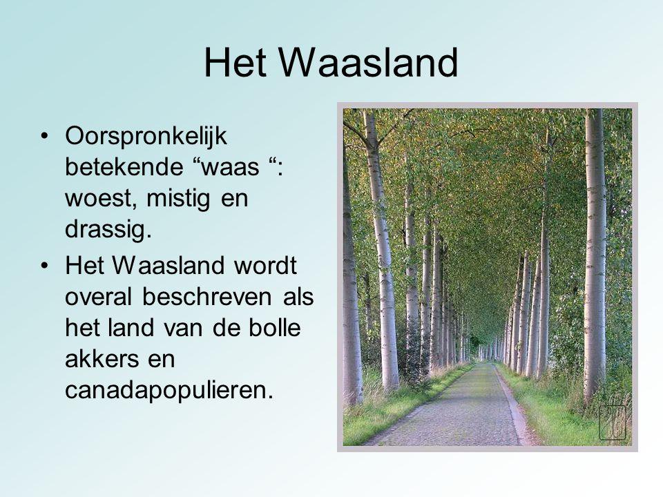 Het Waasland Oorspronkelijk betekende waas : woest, mistig en drassig.