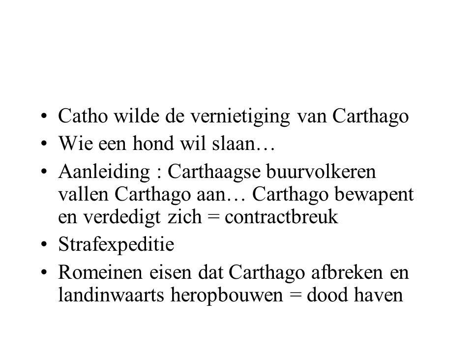 Catho wilde de vernietiging van Carthago