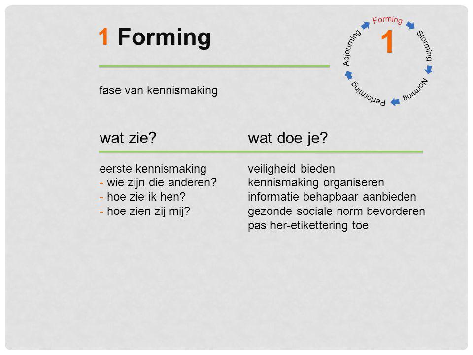 1 1 Forming wat zie wat doe je fase van kennismaking