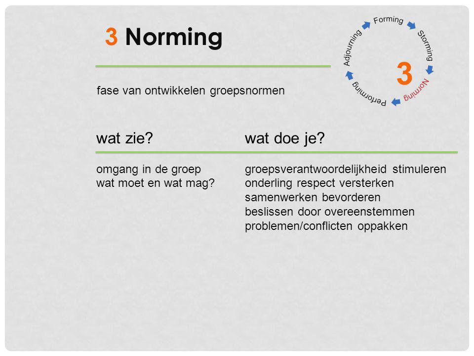 3 3 Norming wat zie wat doe je fase van ontwikkelen groepsnormen