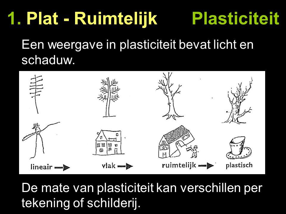 1. Plat - Ruimtelijk Plasticiteit