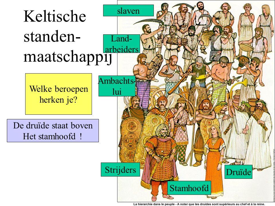 Keltische standen- maatschappij