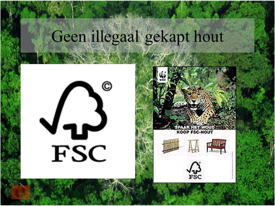 Geen illegaal gekapt hout