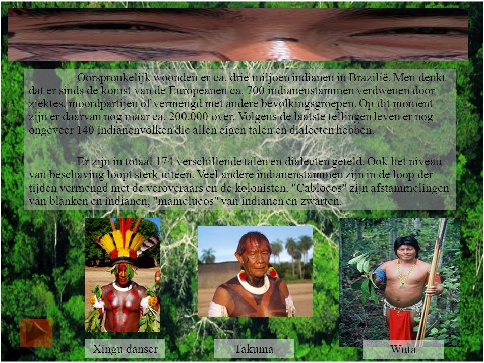 Oorspronkelijk woonden er ca. drie miljoen indianen in Brazilië