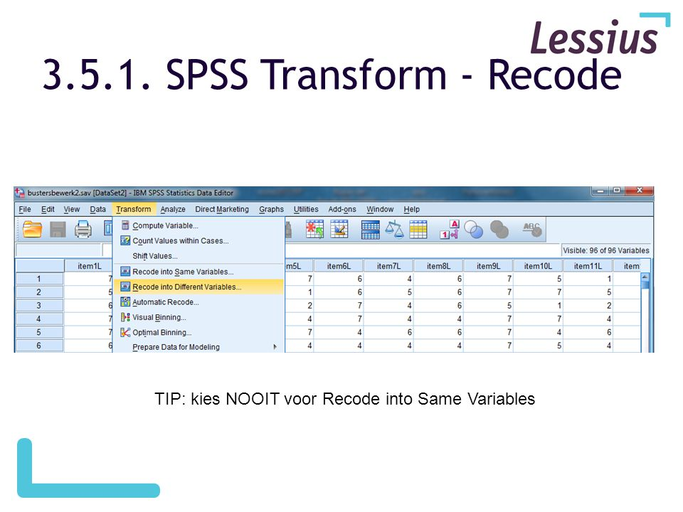 3.5.1. SPSS Transform - Recode