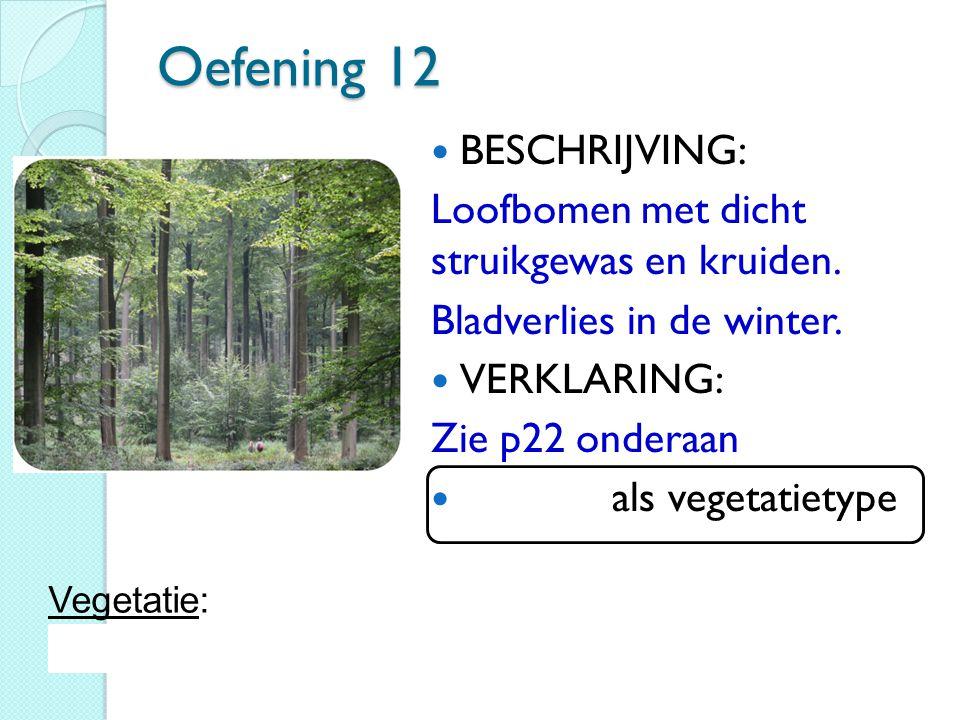Oefening 12 BESCHRIJVING: Loofbomen met dicht struikgewas en kruiden.