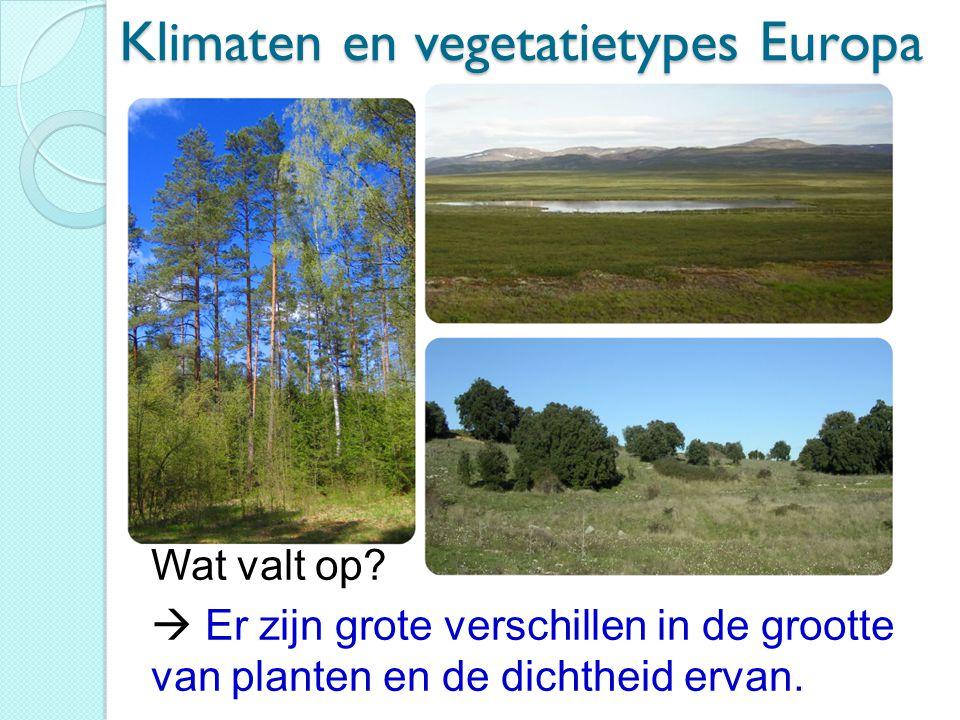 Klimaten en vegetatietypes Europa