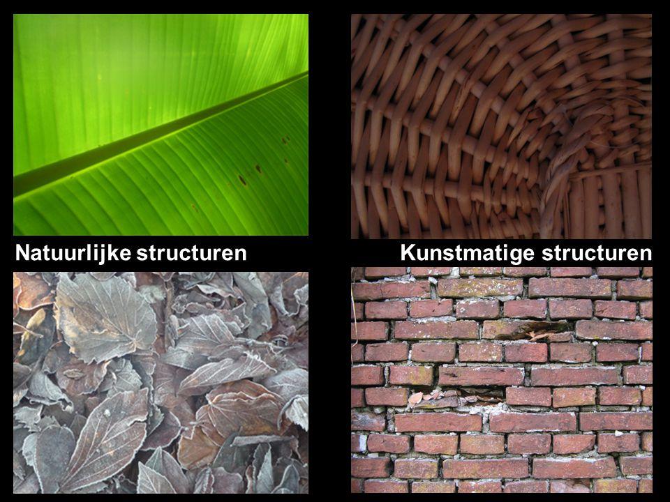 Natuurlijke structuren