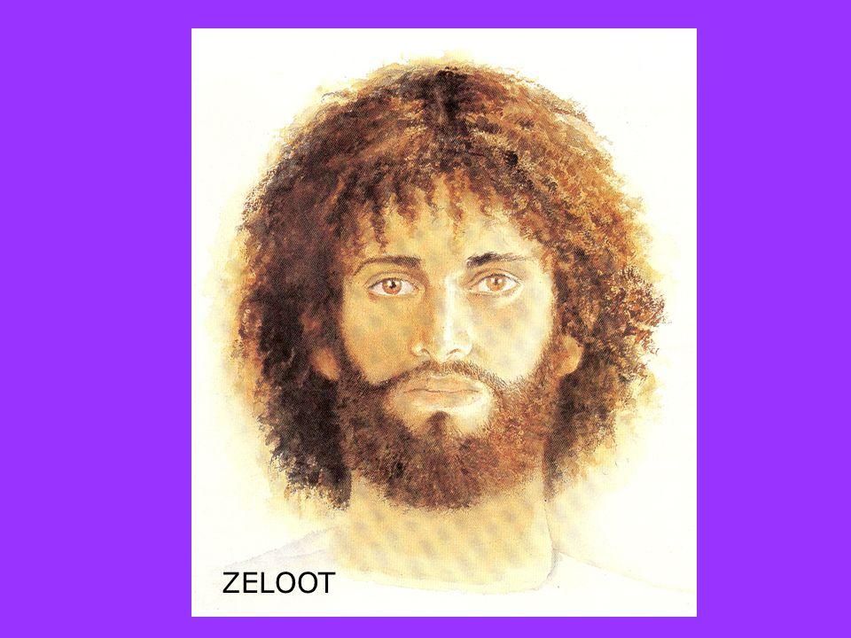 ZELOOT