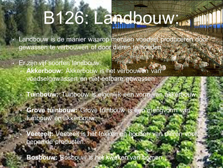 B126: Landbouw: Landbouw is de manier waarop mensen voedsel produceren door gewassen te verbouwen of door dieren te houden.