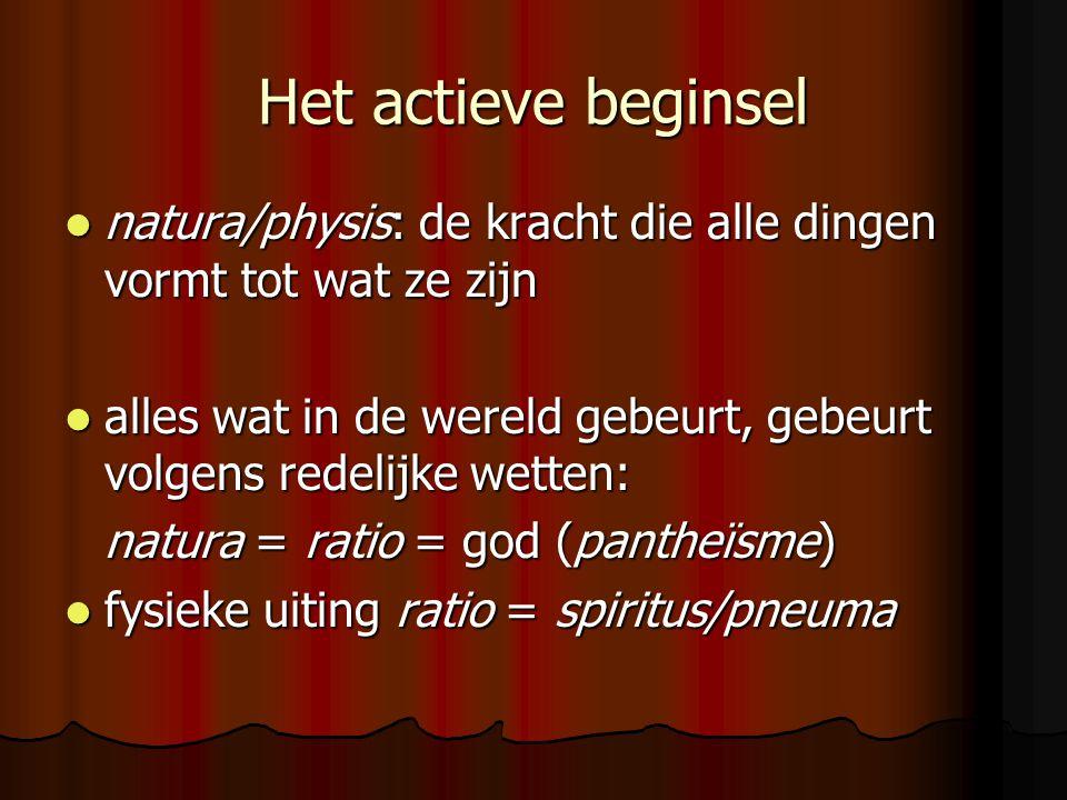 Het actieve beginsel natura/physis: de kracht die alle dingen vormt tot wat ze zijn.