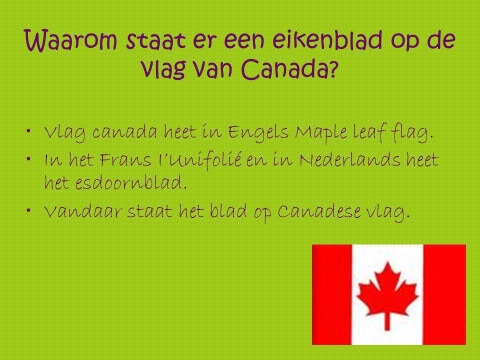 Waarom staat er een eikenblad op de vlag van Canada