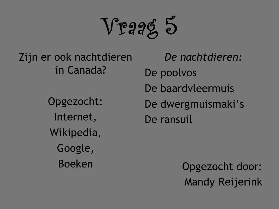 Vraag 5 Zijn er ook nachtdieren in Canada Opgezocht: Internet, Wikipedia, Google, Boeken