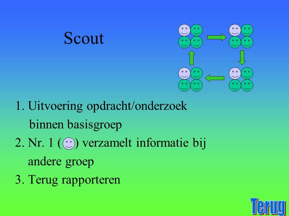 Scout Terug 1. Uitvoering opdracht/onderzoek binnen basisgroep