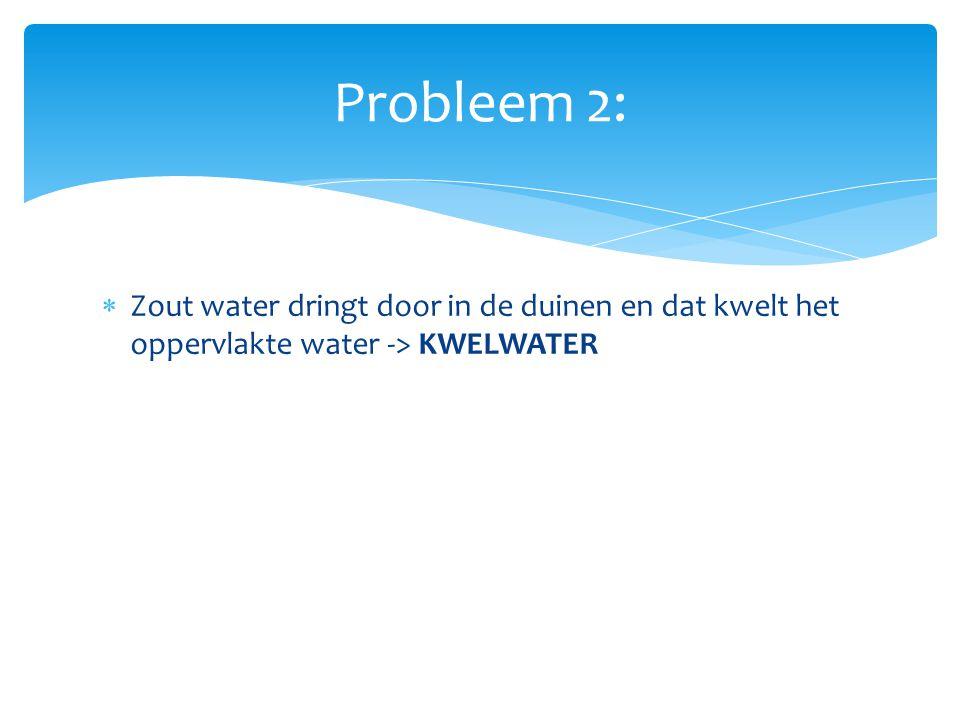 Probleem 2: Zout water dringt door in de duinen en dat kwelt het oppervlakte water -> KWELWATER