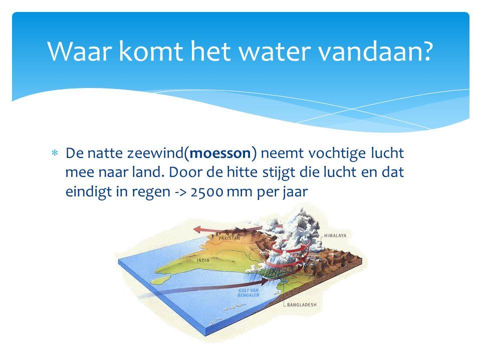 Waar komt het water vandaan