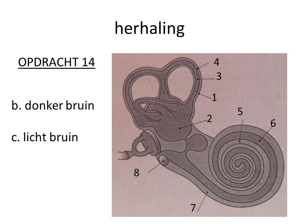 herhaling OPDRACHT 14 4 3 1 b. donker bruin c. licht bruin 5 2 6 8 7