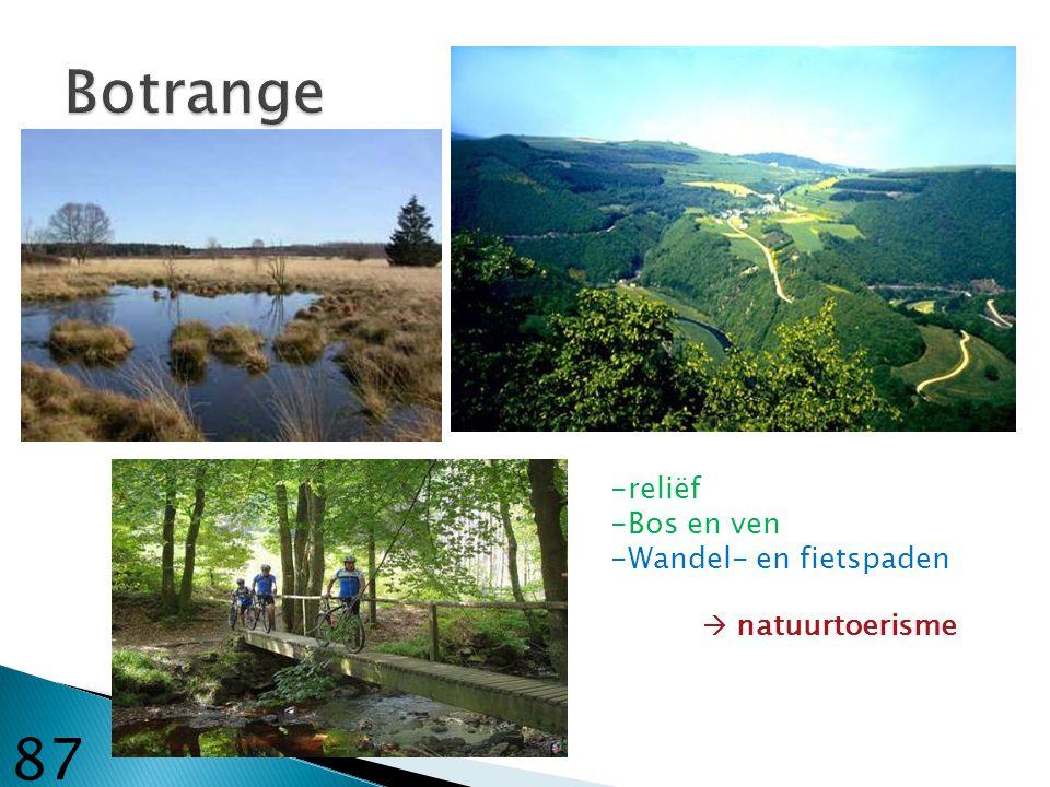Botrange reliëf Bos en ven Wandel- en fietspaden  natuurtoerisme 87