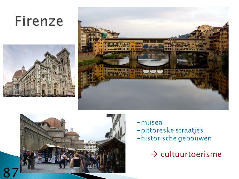 Firenze 87 -musea -pittoreske straatjes -historische gebouwen