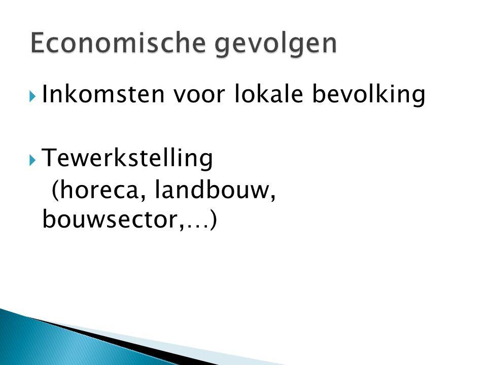 Economische gevolgen Inkomsten voor lokale bevolking Tewerkstelling
