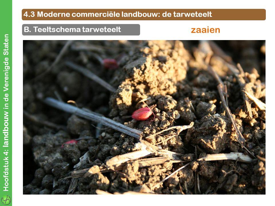 zaaien 4.3 Moderne commerciële landbouw: de tarweteelt