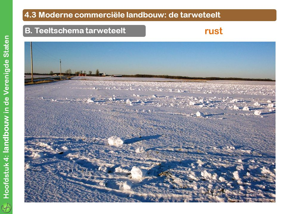 rust 4.3 Moderne commerciële landbouw: de tarweteelt