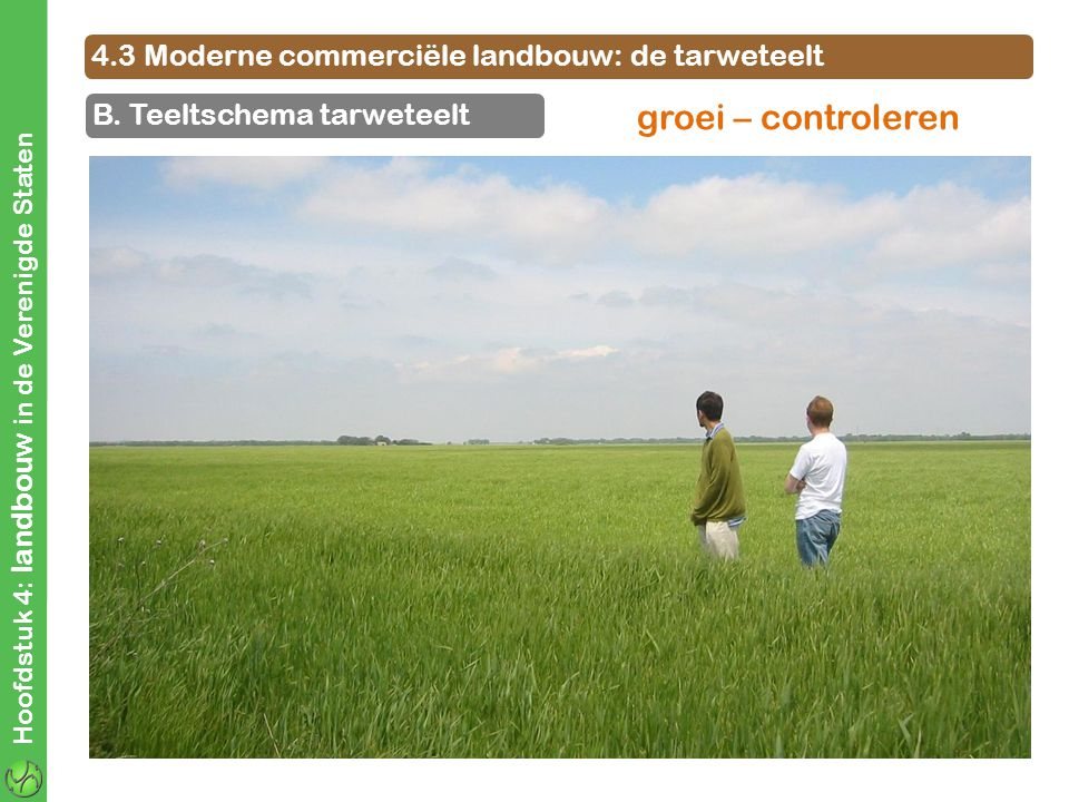 groei – controleren 4.3 Moderne commerciële landbouw: de tarweteelt