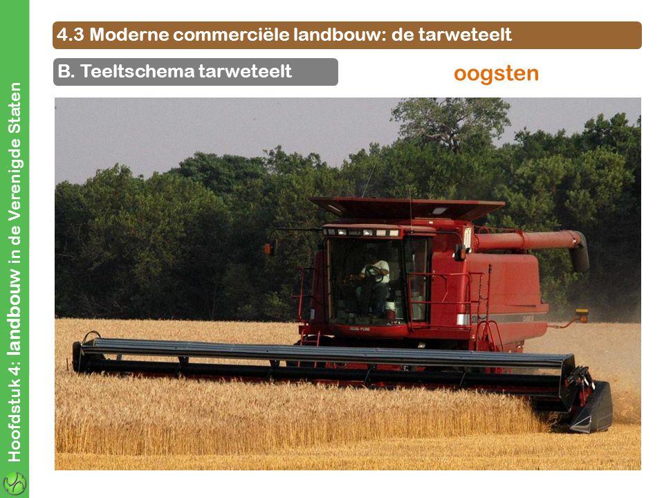 oogsten 4.3 Moderne commerciële landbouw: de tarweteelt