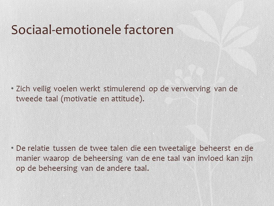 Sociaal-emotionele factoren