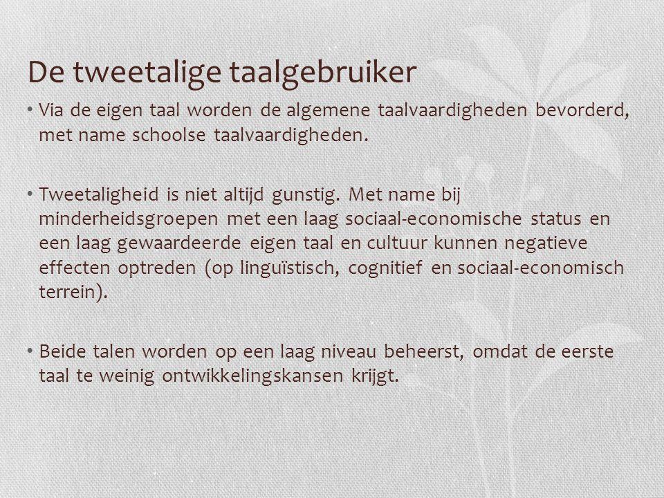 De tweetalige taalgebruiker