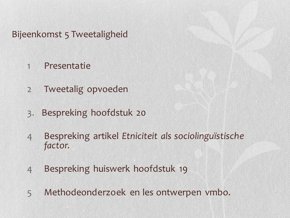 Bijeenkomst 5 Tweetaligheid