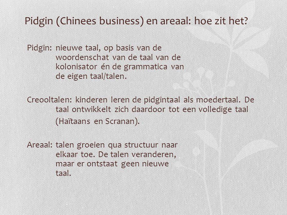 Pidgin (Chinees business) en areaal: hoe zit het