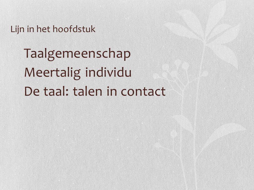 Taalgemeenschap Meertalig individu De taal: talen in contact