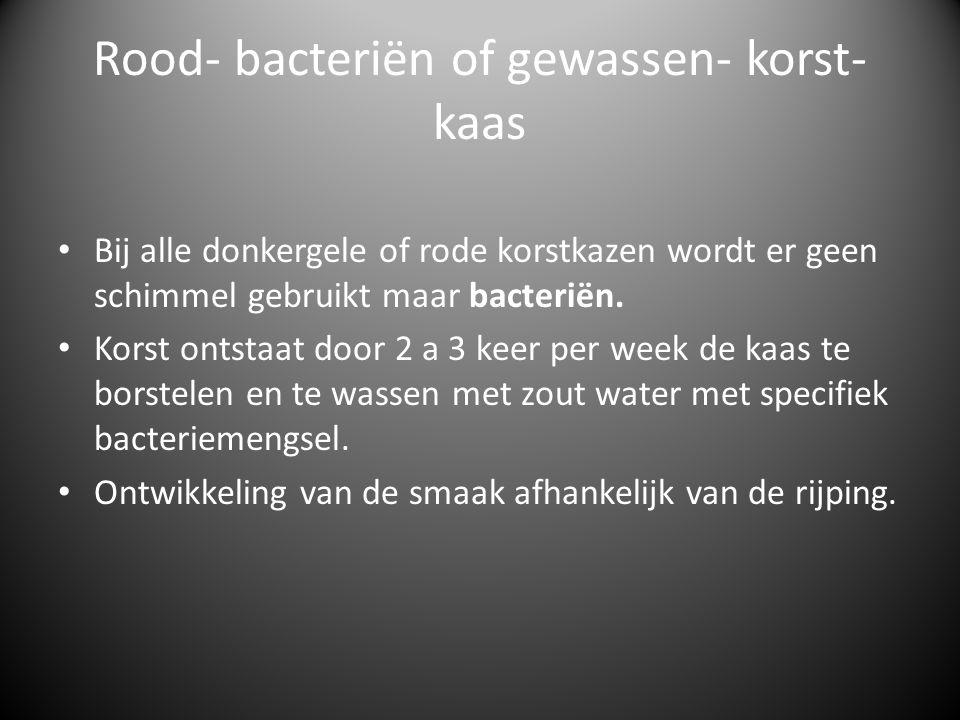 Rood- bacteriën of gewassen- korst-kaas