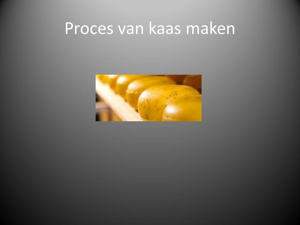 Proces van kaas maken