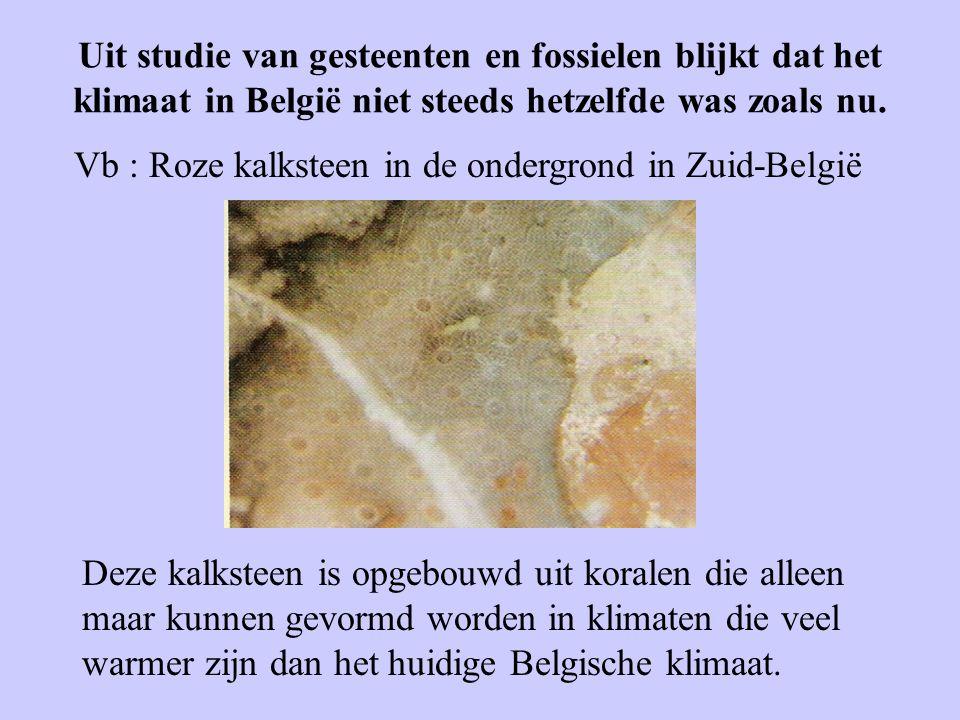 Uit studie van gesteenten en fossielen blijkt dat het klimaat in België niet steeds hetzelfde was zoals nu.